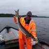 Atlantic sturgeon juvenile tagged and released